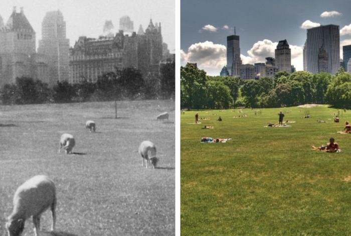 Централ парк тогда и сейчас