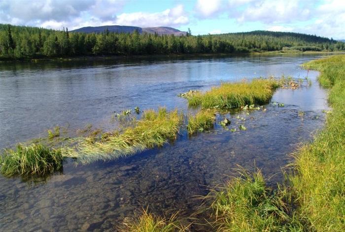 Река Собь