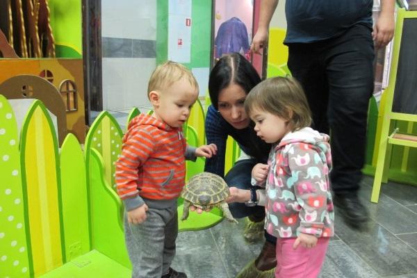 Контактный зоопарк Бугагашечка Санкт-Петербург