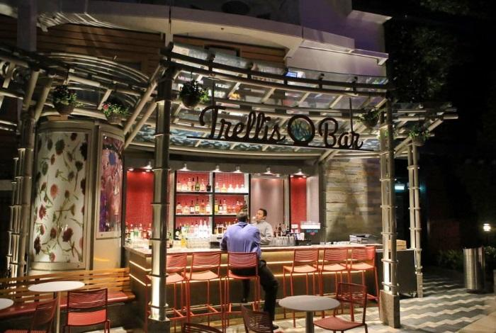Trellis Bar
