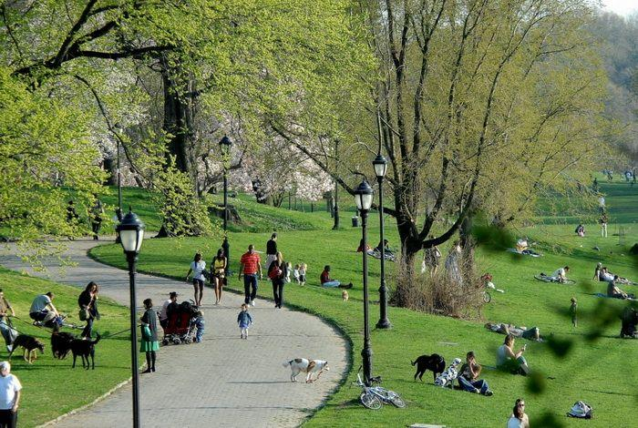 Проспект-парк