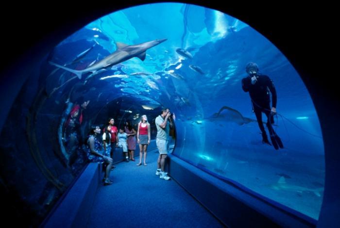 Подводная обсерватория