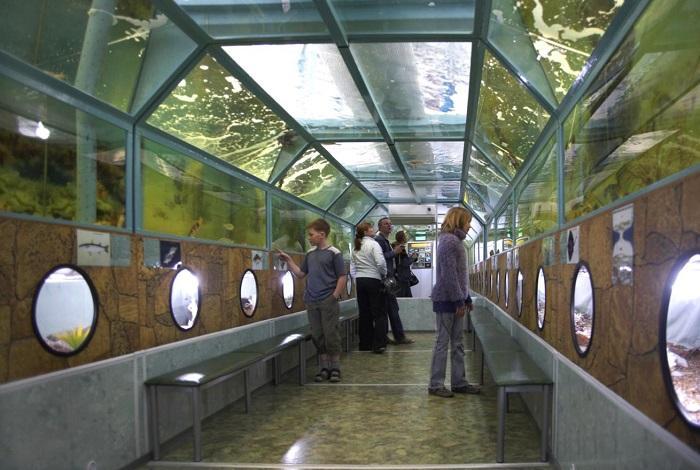 Морской аквариум Батискаф