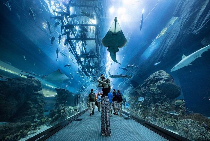 Аквариум в ТРЦ «Дубай Молл»